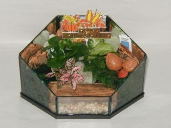 Terrarium Holiday Fall